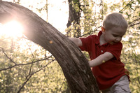 "1-5, Chattanooga, TN, Tennessee, backlit, boy, children, ""christine lewis photography"", gallery, images, in, joy, kids, laughing, little, old, photographer, photos, pictures, portraits, red, small, su"