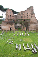 "ancient, art, ""christine lewis photography"", decor, fine, hill, home, italy, palatine, print, rome, ruins, travel"