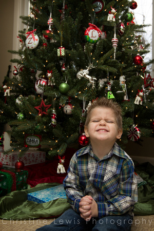 children professional photography portrait photo shoot chattanooga, TN Dunlap Christmas boy plaid