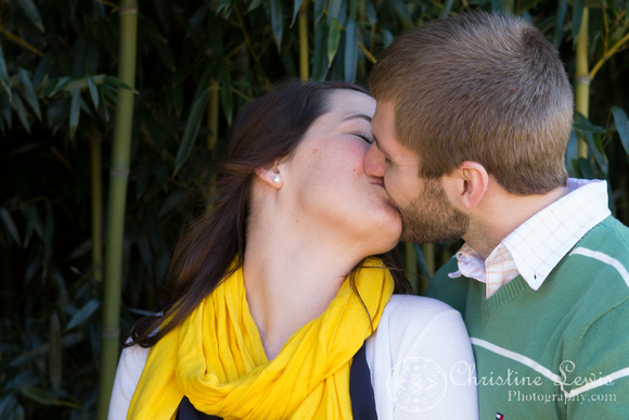 "professional photographer chattanooga, tn, ""christine lewis photography"", couple, anniversary, one year, love, marriage, bamboo, yellow, green, kissing"