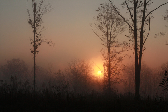 """christine lewis photography"", countryside, farm, fog, orange, rural, sunrise, trees"