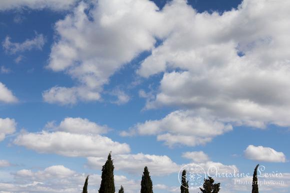 "tuscany, cypress, trees, Italy, siena, travel ""christine lewis photography"""