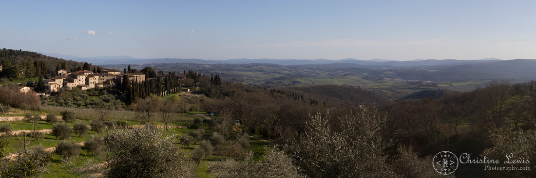 "chianti, tuscany, italy, travel, ""christine lewis photography"", fine art print, home decor, vineyard, cypress"