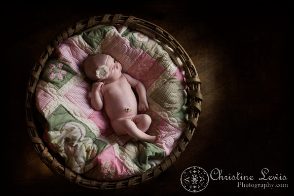 "newborn portrait photo shoot chattanooga, tn, ""christine lewis photography"", natural, basket, quilt"