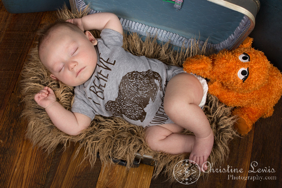 "family portrait baby chattanooga, tn hixson ""christine lewis photography"" 3 months old, snuffleupaugus, snuffy"
