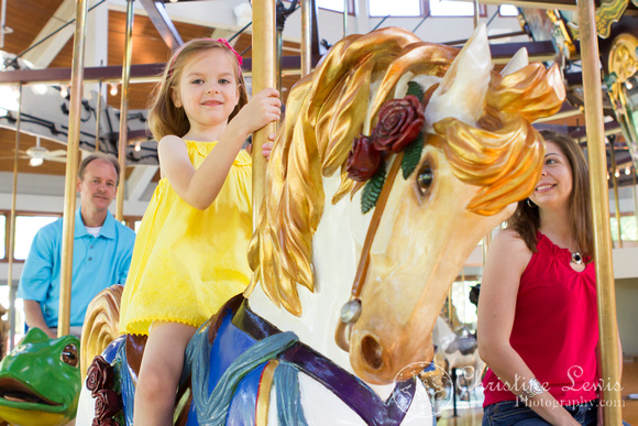 """family photo shoot, portrait session, chattanooga, tn, tennessee, coolidge park, """"christine lewis photography"""", carousel"""