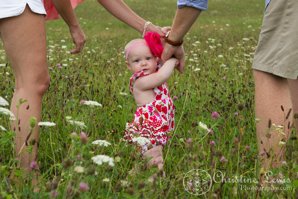 """6 month old baby portrait photo shoot professional Chattanooga, TN """"Christine Lewis Photography"""" child wildflower field outdoor natural"""