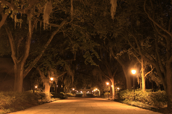 """forsyth park"", ""forsyth park fountain"", georgia, ghosts, ""long exposure"", ""no flash night shot"", savannah"