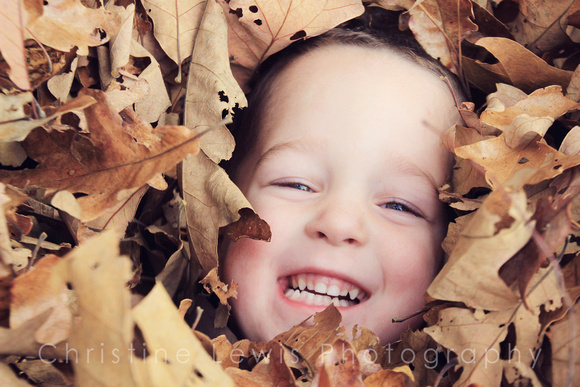 "1-5, Chattanooga, TN, Tennessee, autumn, boy, children, ""christine lewis photography"", fall, gallery, grinning, images, in, joy, kids, laughing, leaves, little, old, photographer, photos, pictures, po"