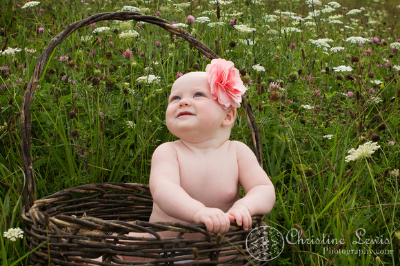 """6 month old baby portrait photo shoot professional Chattanooga, TN """"Christine Lewis Photography"""" child wildflower field outdoor natural basket"""