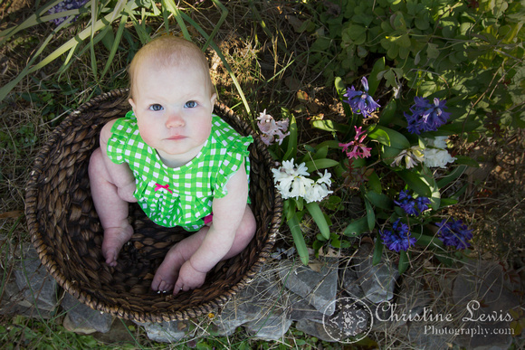 "family portrait, professional, chattanooga, tn, tennessee, ""christine lewis photography"", child, baby, basket, spring, flowers, looking up"