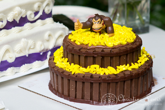 "professional wedding photography, Chattanooga, tn, Atlanta, ""Christine lewis photography"", reception, groom's cake"
